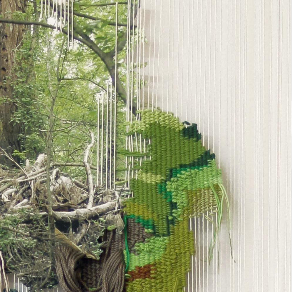 2. Ana Barboza Gubo, 'Forest Fabric', 2018, digital photo, textiles, Photo A. Gubo detail